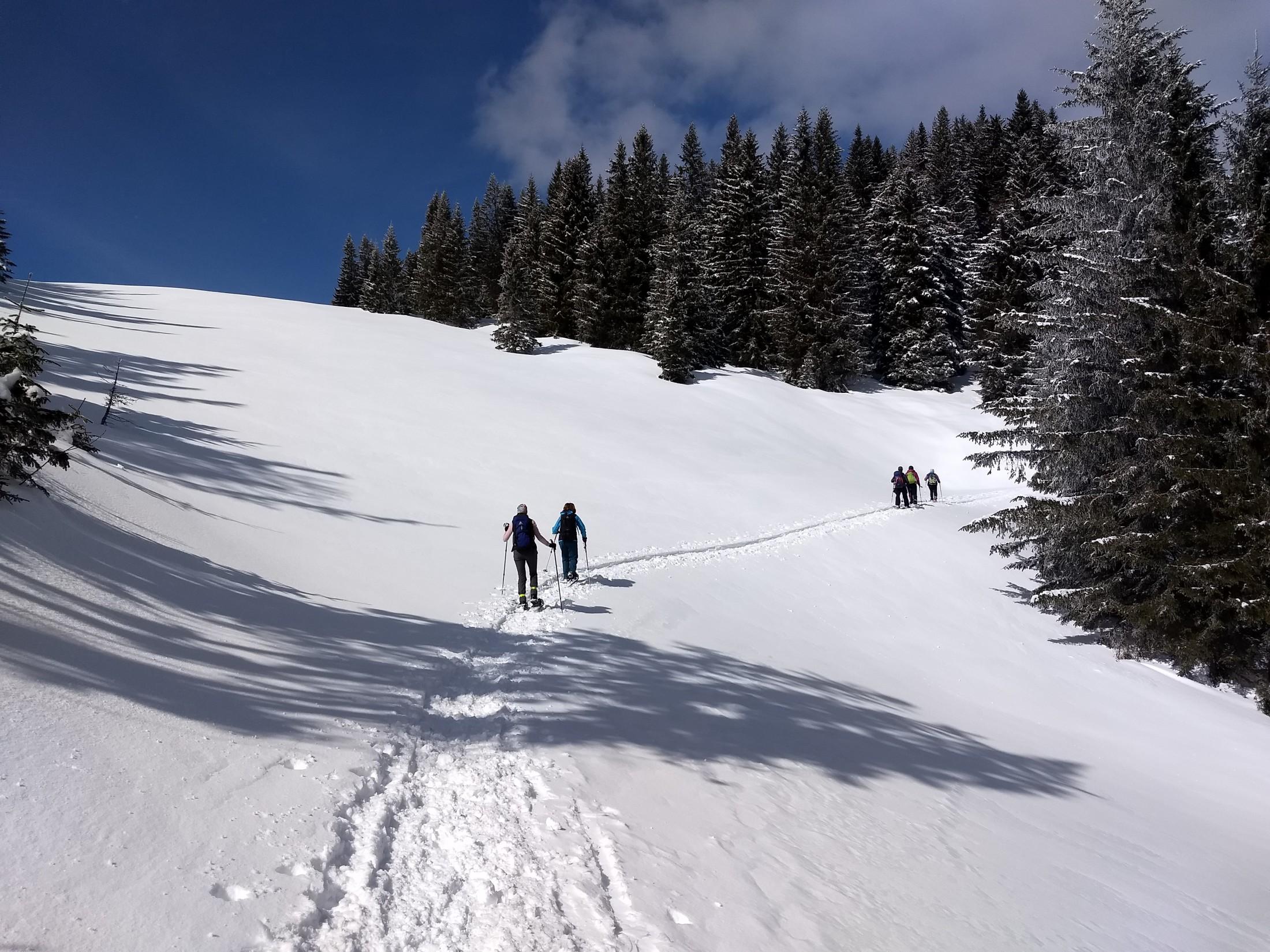 Öffi-Tour: Irrwege bei der Anreise – Sonne im Schnee