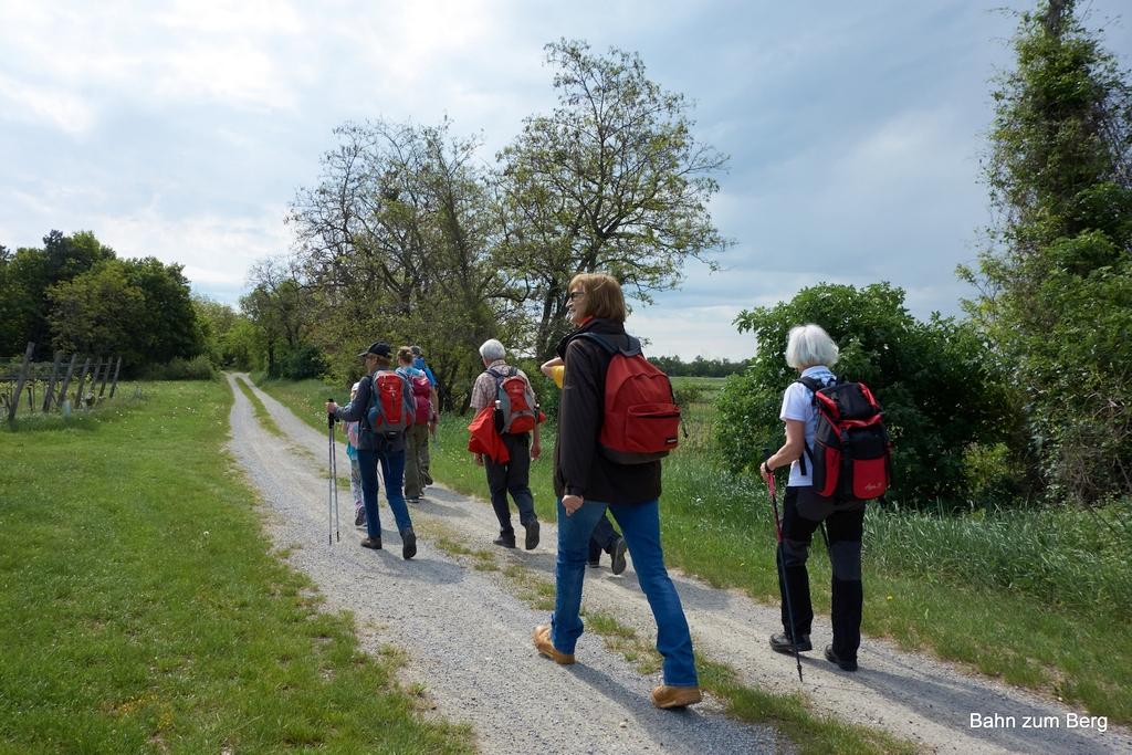 Öffi-Tour: Flora am Hundsheimer Berg