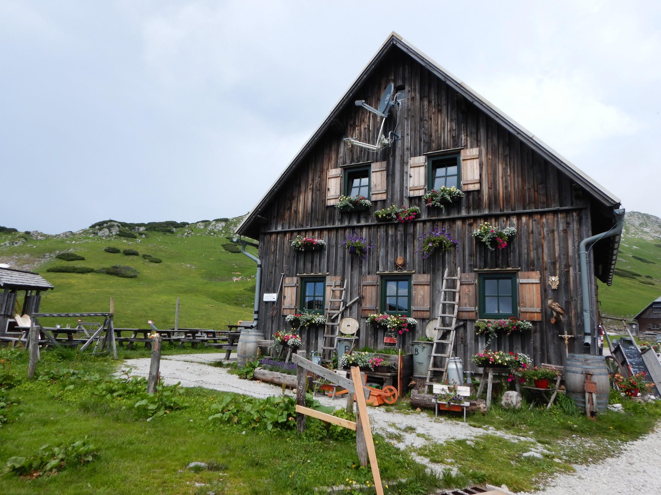 Bergwaldprojekt Schneealm (10.06.2018 bis 16.06.2018)
