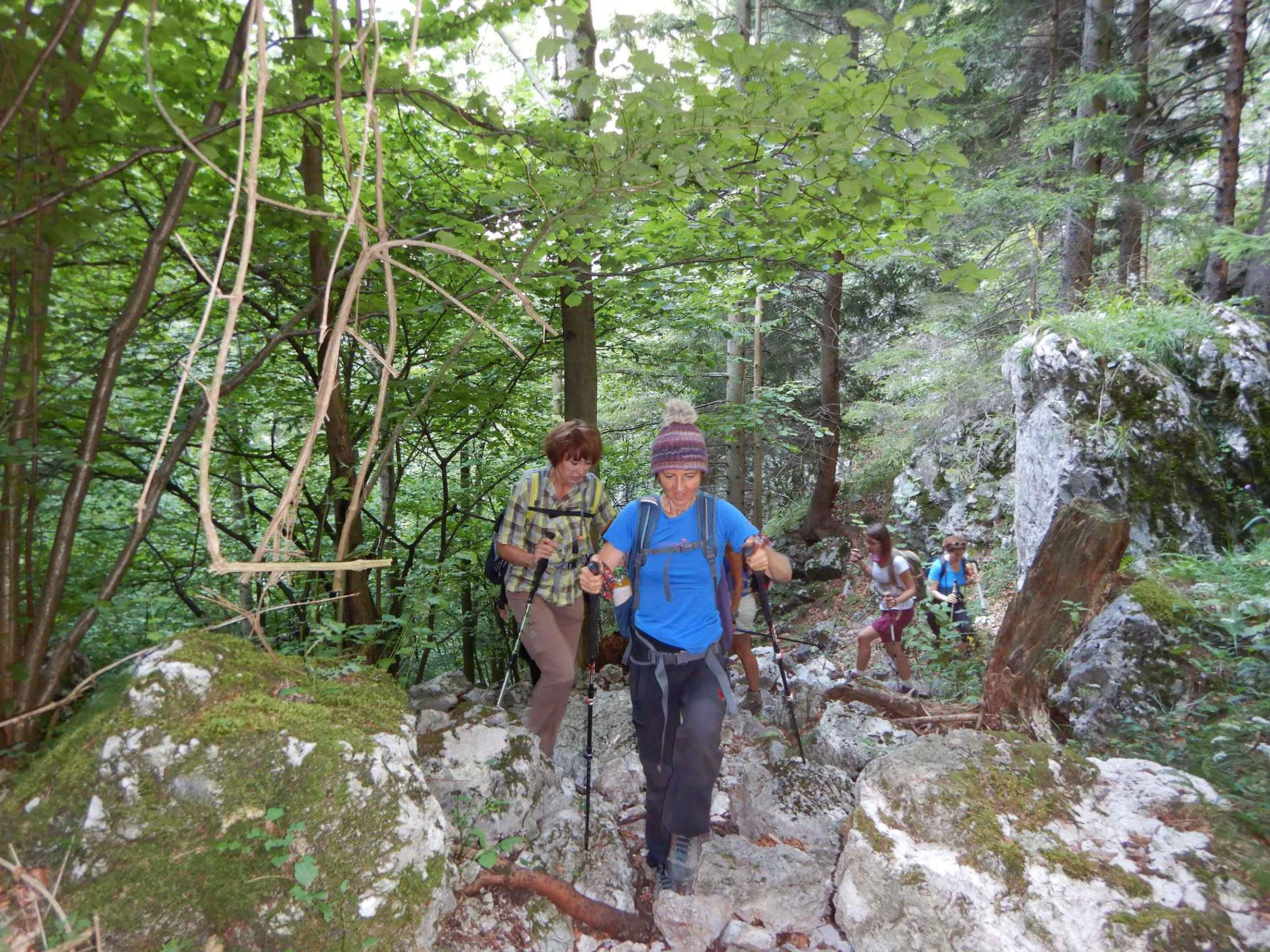 Durch den Stadlwandgraben aufs Klosterwappen am 19.07.2018