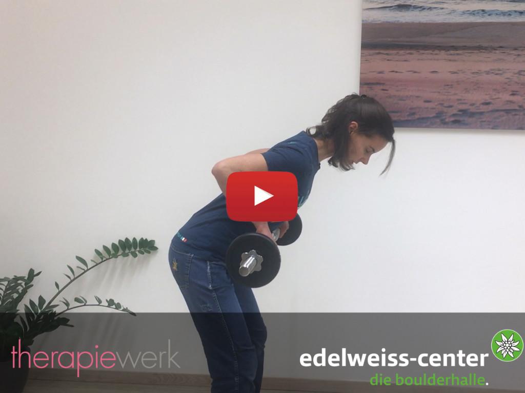 Schulter Übungen Session 1