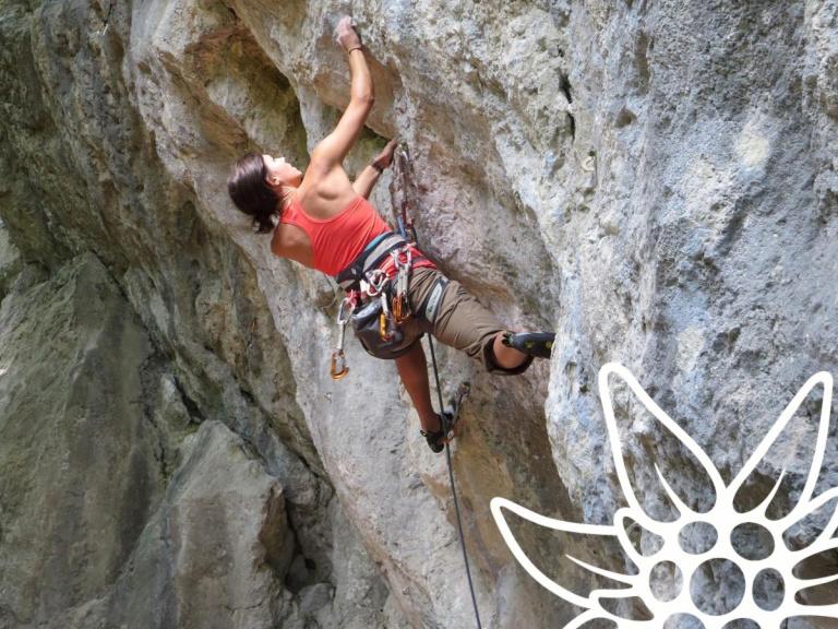 Kletter-Tipp: Kraftwandl