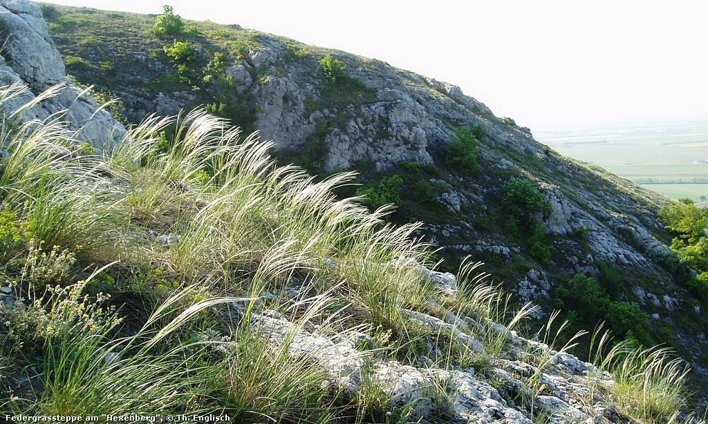 Hof- und Berg-Wanderung