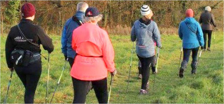 NEU: Nordic Walking-Kurse für Best Agers!