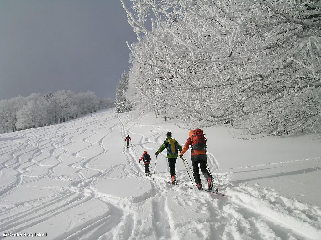 JUGEND: Ladies Skitour II (18-27 Jahre)
