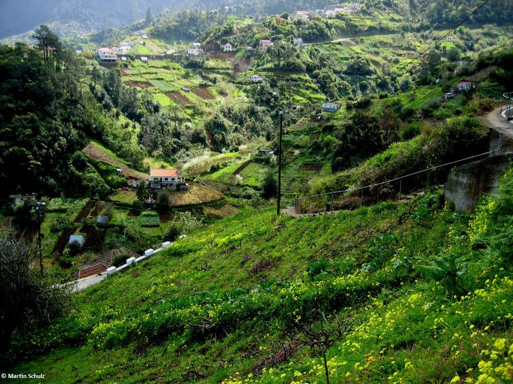 Wanderwoche <BR>Madeira