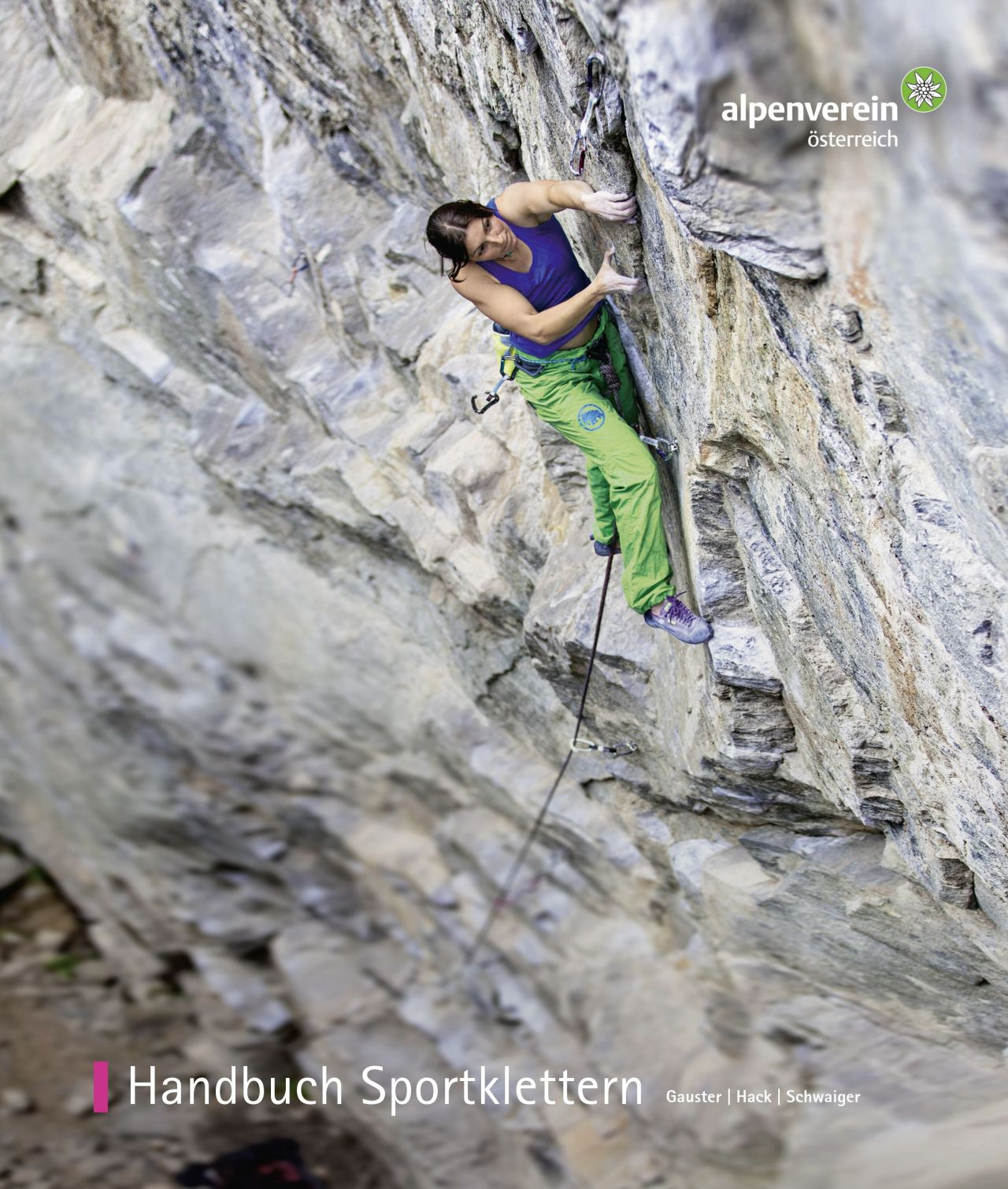 Handbuch Sportklettern, Auflage 3, 2016