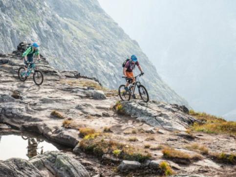 Mountainbike Umfrage